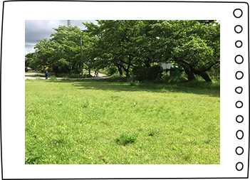 宮川緑地公園風景